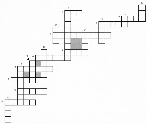 Stepichev Pyotr Irregular Verbs Crosswords 10 2008